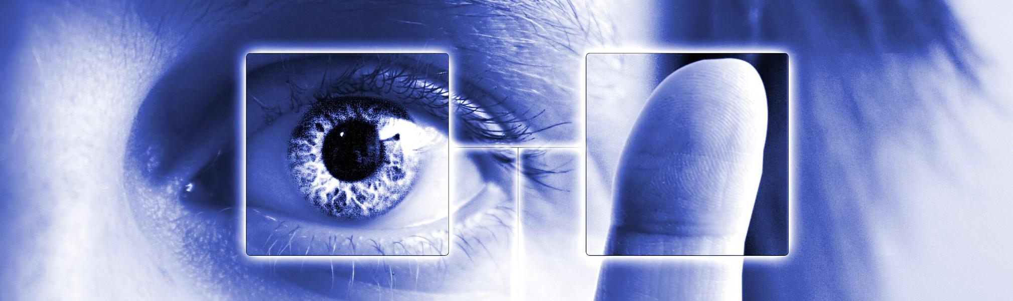«Всевидящее око» ФНС: чем грозит налоговая революция?